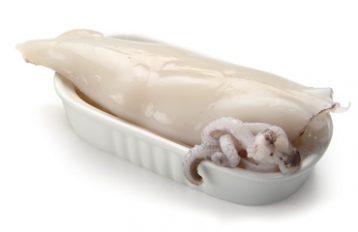 Calamaro del Pacifico Pulito